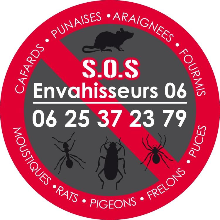 Société de cafards à Sospel, Nice, Menton, Monaco, Cannes, Eze, Beaulieu